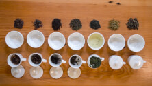 Phases of tea infusion