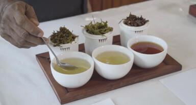 Evaluating tea liquor