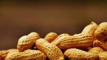 Common food allergies and restrictions