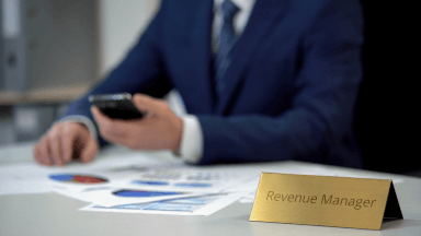 The revenue manager