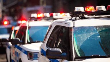 Law enforcement responses