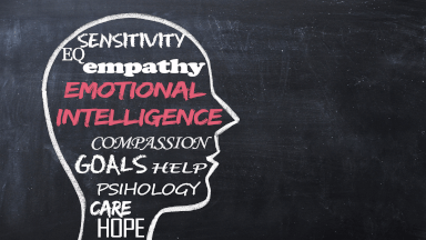 Introducing the four domains of emotional intelligence
