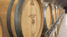 Why oak matters in winemaking