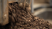 Processing and roasting coffee beans