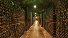 Storing champagne (open and closed bottles)